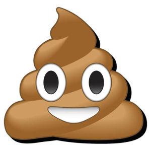 Emoji Poop Funky Chunky Magnet
