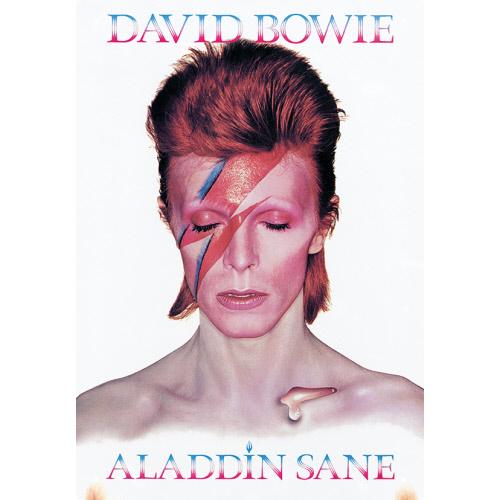 David Bowie Tin Sign.
