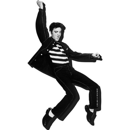 Elvis Jailhouse Funky Chunky Magnet.