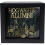Harry Potter Hogwarts Alumni Shadow Box Bank.