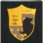 Harry Potter Hufflepuff Box Sign.