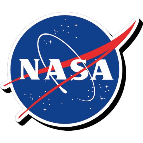 NASA Logo Funky Chunky Magnet